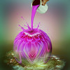 Colorful (jaci XIII) Tags: lilás clodo flor dália tinta lata mão lilac flower dahlia ink tin hand