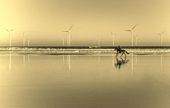 A horse with no name (Camera_Shy.) Tags: horse riding beach sand water landscape seascape reflections wind turbines
