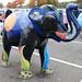 Herd of Sheffield 2016 – 12. Interst-Elephant