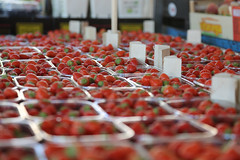 Swedish strawberries (Danderson Photography) Tags: fruitstand fruit stockholm sweden strawberries strawberry stand