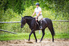 Horse Show (JustJamieLeigh) Tags: horse horses horsebackriding horseback riding show horseshow competition canon60d canon 60d equestrian equines english englishriding equine animal animals