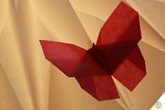 Butterfly (Danielle Verbeeten) Tags: butterfly paper origami akira yoshizawa