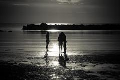 Innocenti amicizie (iSergioP) Tags: silhouette mare estate bn sole spiaggia bellaria