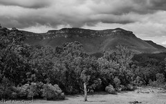 Megalong Valley (Alan Creed) Tags: landscape blackheath bluemountains valley megalong