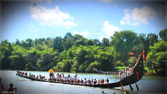 IMG_3980 (|| Nellickal Palliyodam ||) Tags: india race temple boat snake kerala krishna aranmula avittam parthasarathy vallamkali palliyodam malakkara nellickal jalothsavam