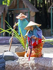 Washing by the river (Gabriela Iacobuta) Tags: bali colour green water hat leaves river indonesia colorful theatre traditional ngc performance cleaning clothes clean washing rudimentary 5photosaday