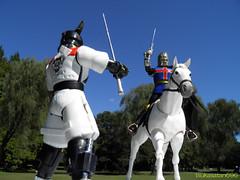vs (tsukasatan696) Tags: castle toy outdoor ninja figure saitama org jiraiya toyphotography akigasepark  outdoortoyphotography  dokusai baronowl sekaininjasenjiraiya