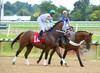 "2015-08-23 (10) r1 Victor Carrasco on #1A Dixie Notion (JLeeFleenor) Tags: photos photography md marylandracing laurelpark jockey جُوكِي ""赛马骑师"" jinete ""競馬騎手"" dżokej jocheu คนขี่ม้าแข่ง jóquei žokej kilparatsastaja rennreiter fantino ""경마 기수"" жокей jokey người horses thoroughbreds equine equestrian cheval cavalo cavallo cavall caballo pferd paard perd hevonen hest hestur cal kon konj beygir capall ceffyl cuddy yarraman faras alogo soos kuda uma pfeerd koin حصان кон 马 häst άλογο סוס घोड़ा 馬 koń лошадь bay maryland"