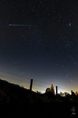 Shooting star (Geoffrey Maillard) Tags: light sky tree night stars landscape shower licht nacht himmel pollution orion gesehen meteor toiles toile sternschnuppe sterren ambiances pliades mtor orionides
