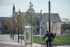 A VISIT TO GRANGEGORMAN COLLEGE CAMPUS [CANON EF 100-400 L IS LENS MOUNTED ON SONY ILCE-A7RM2]-110015