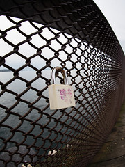 Hidden Meanings (Meghan (Rambling On. . . )) Tags: seattle fence lumix rust waterfront heart lock rusty fisheye panasonic rusted padlock gx8 bodycap olympus9mmf8fisheye dmcgx8 lumixdmcgx8