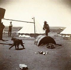 Balmoral Camp, c.1901.