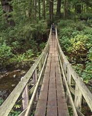 Oregon Coast Trail (xk3z19) Tags: oregoncoast shortsandsbeach oregoncoasttrail
