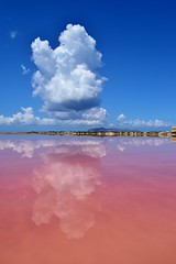 Isola Grande, Marsala, Sicilia, Italia (Davide Morello) Tags: pink summer sky panorama reflection water clouds landscape one this reflecting islands grande view salt like her agosto sicily pan beauties isola marsala egadi 2015 discovering