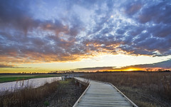 Before the Darkness (denny.weinmann) Tags: autumn sunset fall nature water grass clouds landscape colorful quiet baker wetlands kansas boardwalk preserve lfk lawrenceks bakerwetlands sonyalpha rokinon a6000 sonyimages rokinon12mmf2