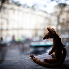 Paris, Paris (and Mr Mousie) (marlequeen) Tags: life paris mouse mekare