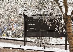 2015_12_13_008_hi (photo_graham) Tags: snow hockey icerink lithiapark osf keepingashlandinfocus