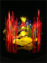1210193 Chihuly (Feist, Michael - FunnyFence - catchthefuture) Tags: light sunset mountain hot chihuly window glass rock night sunrise garden island lava harbor waterfall funny eagle wizard spirit stage clown ghost gig conservatory greenhouse honey sound bolt whale orca lightning friday phantom feist sma