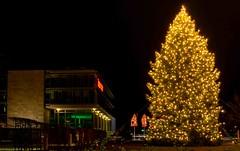 Jgermeister (carsten.plagge) Tags: de deutschland licht nacht weihnachtsbaum jgermeister lichter wolfenbttel niedersachsen 2015 lichtspiel langzeit