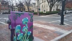 Utility box art (Randall 667) Tags: providence rhode island graffiti street art artist mushrooms magic magik trippy wild trip downtown prov main urban commissioned beautification gentrification college hill risd tunnel