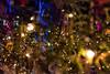 In A Christmas Tree Forest 2 (pni) Tags: xmas tree multiexposure multipleexposure tripleexposure kansallismuseo nationalmuseum thenationalmuseumoffinland helsinki helsingfors finland suomi pekkanikrus skrubu pni christmas