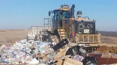 VID_20170107_143427 (Walker the Texas Ranger) Tags: denton dump garbage cat landfill