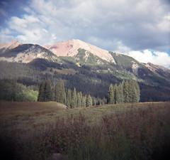 avery in sun (lawatt) Tags: avery peak mountain spruce trees rmbl gothic colorado film 120 portra diana f