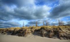 Tiscornia Beach (mswan777) Tags: dune grass beach michigan lake nikon d5100 sigma 1020mm seascape scenic autumn