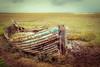 Arfa.... (AJFpicturestore) Tags: arfa boat wreck weathered pastitsbest norfolk sliderssunday hss alanfoster half
