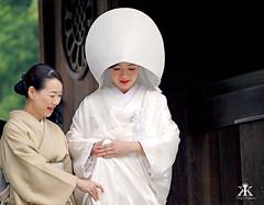 Tokyo 2016, Meiji Shrine, Japanese Shinto Wedding, Shinto Bride WM