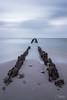 IJsselmeer (BernardFalkena) Tags: friesland holland ijsselmeer strand beach canon lake netherlands landscape hindeloopen clouds landschap longexposure blue evening water sand hout wood palen horizon