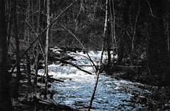 Spring (Shot by Newman) Tags: river shotbynewman spring newengland nature trees water whitewater rocks fujifilm fuji400 35mm daylight flowing