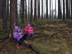 babes in the woods (Sam Turner) Tags: elodie manon woods mist saintferréol france 2016 olympusep1