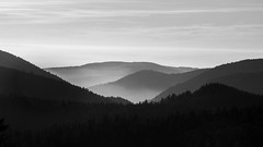 Brumes (Xruuovtb) Tags: rume nuage cloud fog vosges colline hill black white tree forest ballon france canon eos600d efs1585