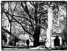 She kept the home fires burning (Shelby's Trail) Tags: 452abandoned fireplace brick rock cow trees blackwhite
