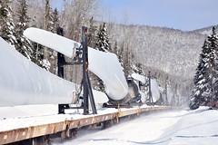 Big blades (Michael Berry Railfan) Tags: sociétéduchemindeferdelagaspésie sfg gaspesie quebec winter snow windmilltrain train freighttrain