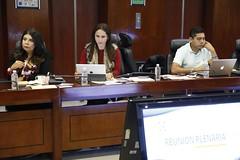 2017-01-30 y 31 Reunión Plenaria y C.P. GPPAN (1)