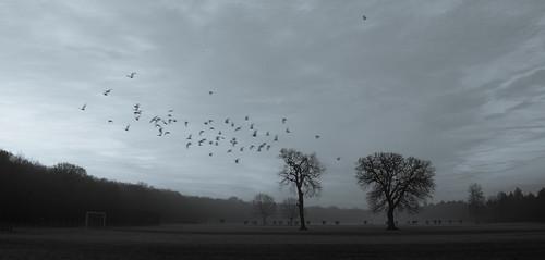 That morning ©  Still ePsiLoN