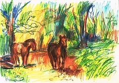 IDEALISMO (GARGABLE) Tags: angelbeltrán apuntes sketch drawings dibujos horses bosque colores composición gargable