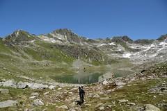 (Giramund) Tags: dog mountain lake alps swiss