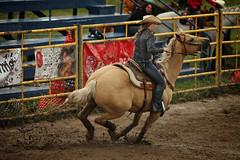 CalgaryPoliceRodeo2015-BarrelRacing-460 (calgarypolicerodeophotos) Tags: horse calgary race bareback sheep barrel police bull racing poker rodeo calf bullriding chute mutton saddle bronc steerwrestling barrelracing saddlebronc cpra chutedogging