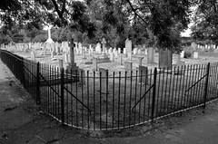 Brompton Cemetery 02 (Cazador de imgenes) Tags: street inglaterra summer england london cemetery photo nikon chelsea foto cementerio royal streetphotography agosto londres verano angleterre borough streetphoto kensington londra reino unido brompton inghilterra westbrompton d7000