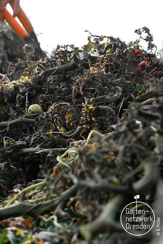 kompostieren_46