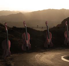 La musica è pura energia che entra prepotentemente in contatto con la nostra anima, armonizzando le dissonanze che la vita ci fa patire (Lien-ART) Tags: summer2009