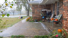 Downpour (Belvarius) Tags: roof brick oklahoma wet water rain puddle outdoor sidewalk oologah pourch