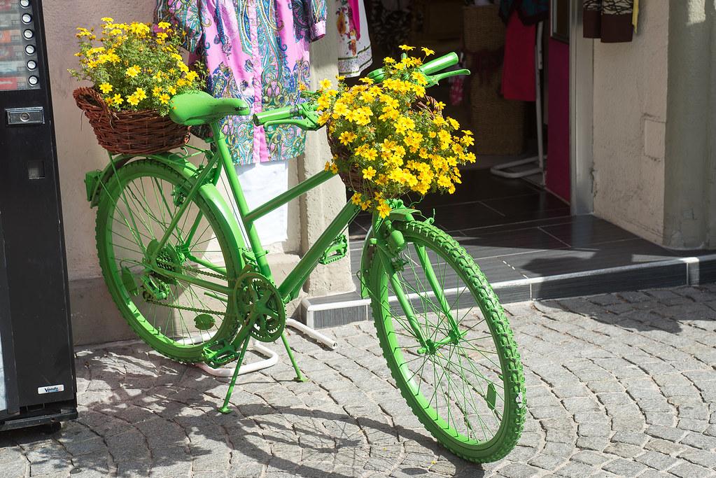 фото: Life in green