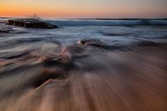 Drawing you in    Bungan Beach (David Marriott - Sydney) Tags: sea beach water sunrise dawn wave australia newport newsouthwales bungan