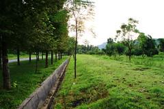Jheel Park Taxila Cantt (KASHIF_AFRIDI) Tags: park taxila cantt jheel