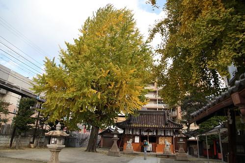 駅前の神社