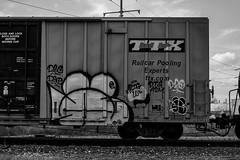 (o texano) Tags: houston texas graffiti trains freights bench benching wyse dts d30 a2m defthreats adikts
